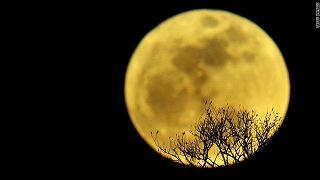 gal.full.moon.jpg_-1_-1